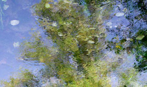 11.2016 concorso interno: l'acqua
