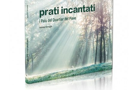 PRATI INCANTATI – mostra on line